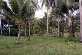Land for sale in Poblacion I, Bohol