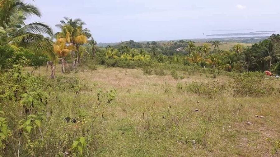 3,542 sqm with amazing seaviews in cebu and bohol islands