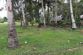 Land for sale in Trinidad, Bohol