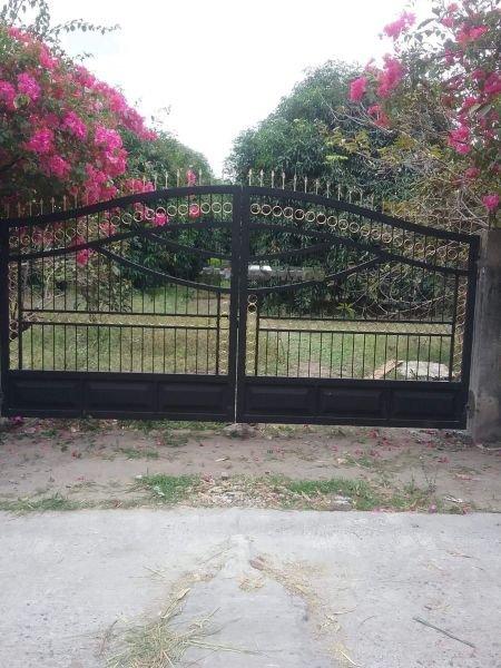 5000 sq. meter mango farm land for sale