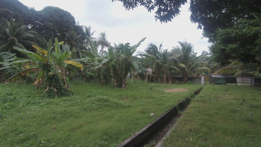 residential lot for sale in sibulan, negros oriental near the airport 1176sqm