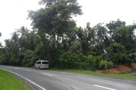 Land for sale in Herrera, Albay