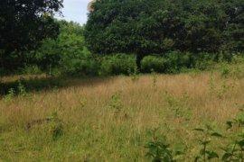 Land for sale in Mambago-A, Davao del Norte