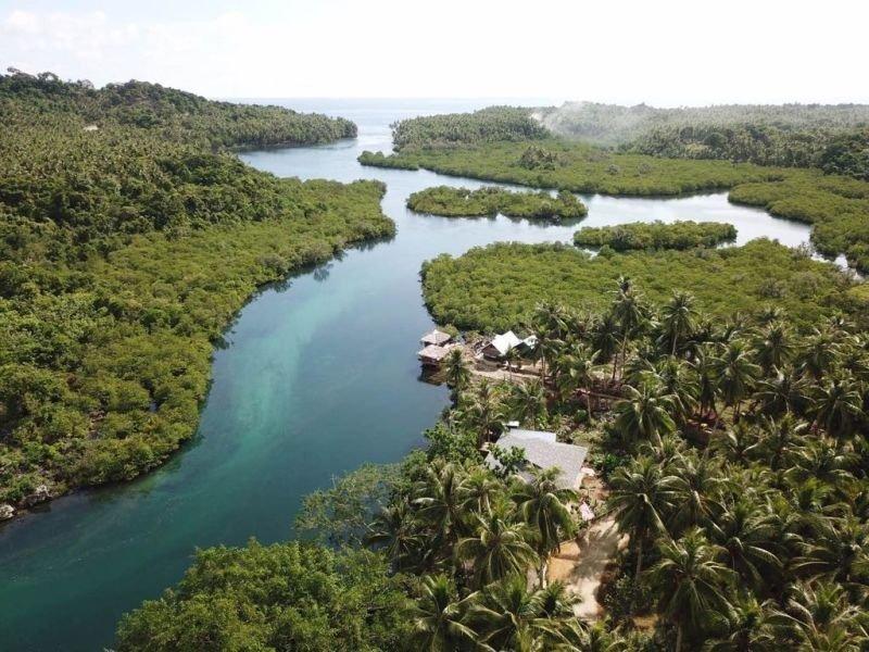 2 houses on the san isidro river siargao island