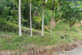 Land for sale in Cebu City, Cebu