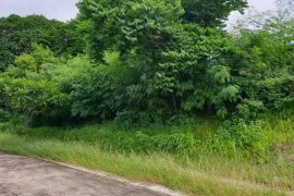 Land for sale in Santa Ana, Batangas