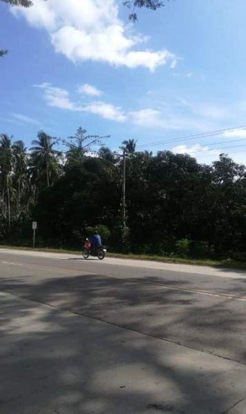 mango farm along highway for sale limbahan lupon dvo or