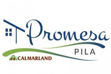 Promesa Pila