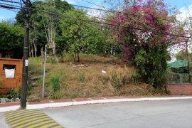 Land for sale in Matandang Balara, Metro Manila