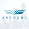 Skynora Corp. Sales