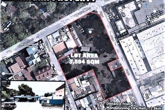 Commercial properties for Sale near Boni MRT-3 station | Dot