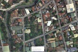 Land for sale in San Antonio, Metro Manila