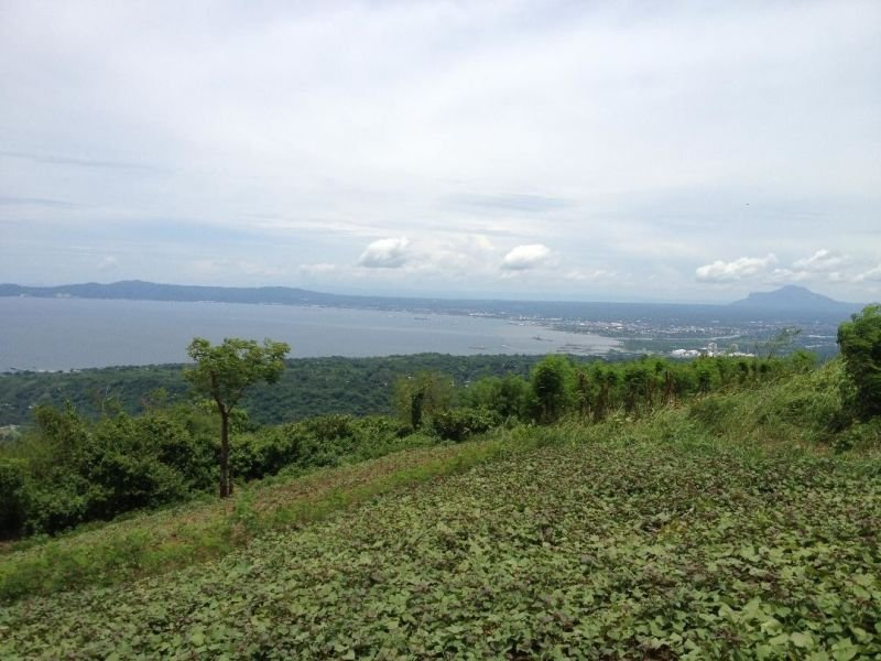 agricultural land in batangas city for sale - 3186910