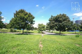 Land for sale in McKinley Hill, Metro Manila