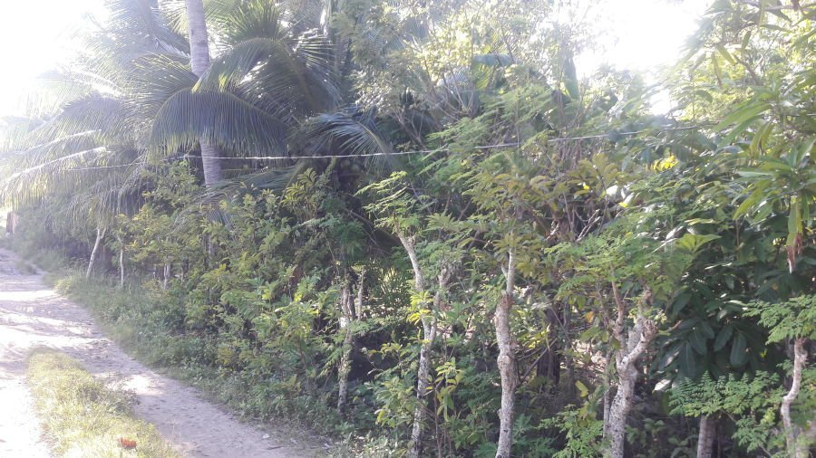 residential lot in sitio mantulungan