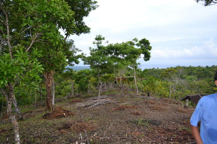 over 2 hectors, 5 million php, new main road just finished directly by property . 5 minutes to siquijor town