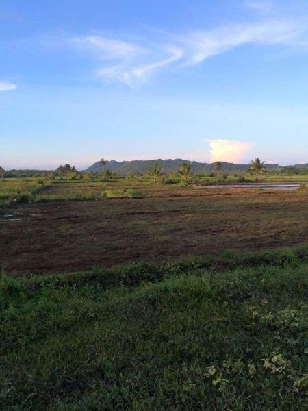 farm resort in siargao island
