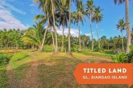 Land for sale in Catangnan, Surigao del Norte