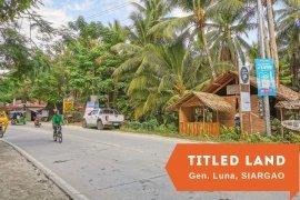Land for sale in Poblacion V, Surigao del Norte