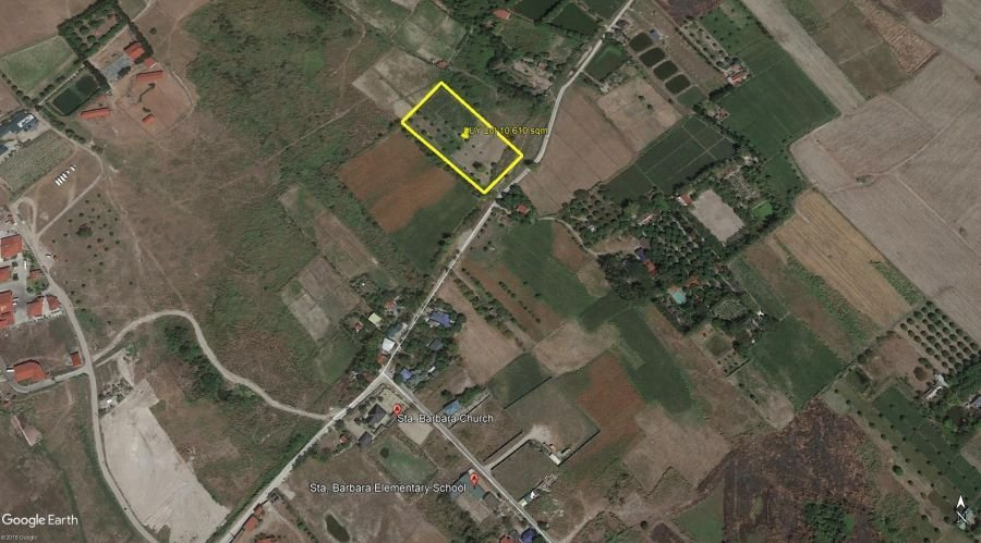 farm lot for sale by owner with mango trees