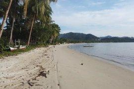 Land for sale in Port Barton, Palawan