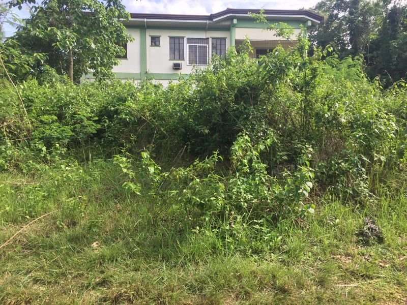 lot for sale at uptown, ubujan, tagbilaran city, bohol