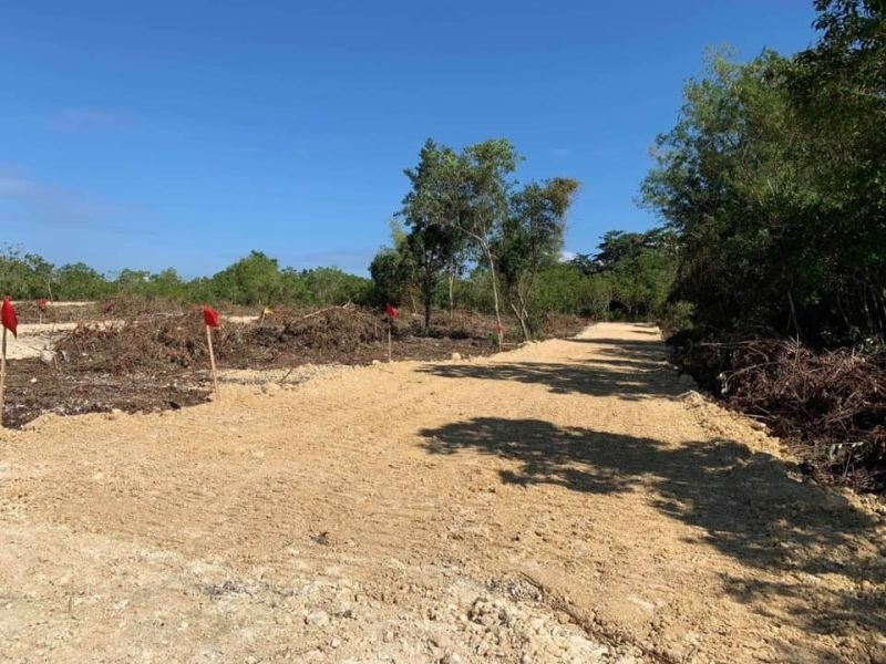 installment lot for sale bingag dauis,panglao island