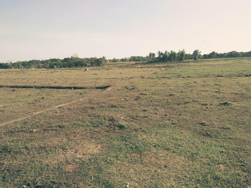 for sale 1.5 hectares agriculture lot in buenavista, guimaras