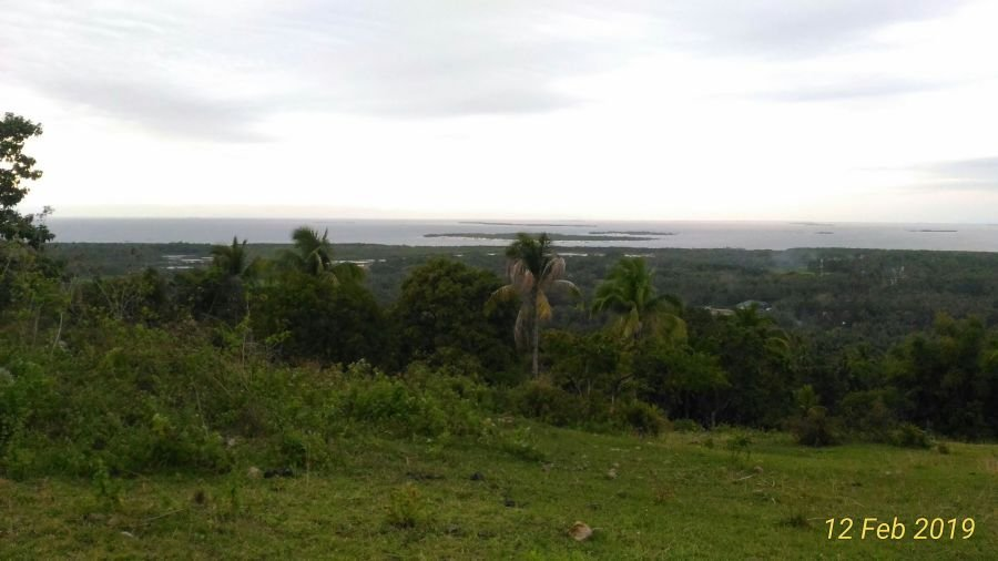 overlooking lot for sale in tubigon 575 per square meter