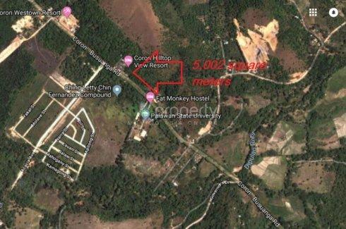 Land for sale in Barangay VI, Palawan