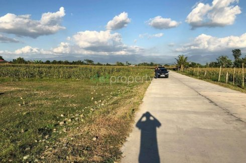 Land for sale in Centro, Isabela