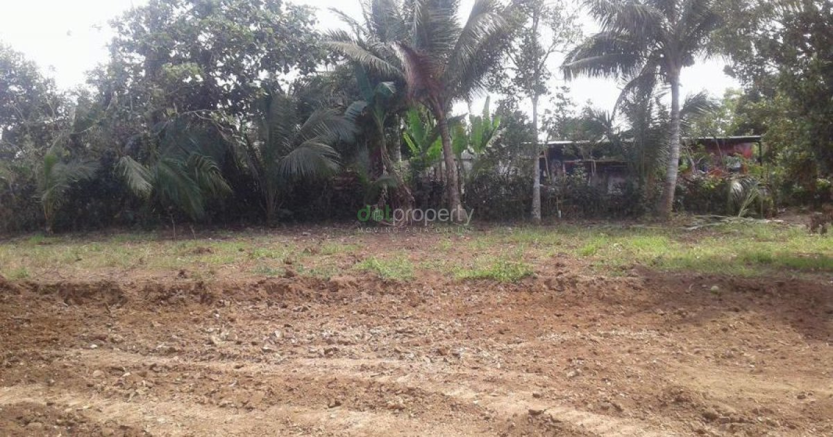 Amadeo Property For Sale
