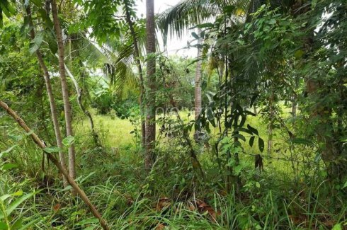 Barili Cebu Property For Sale